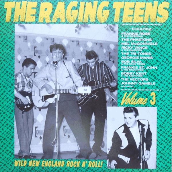 Raging Teens Vol #3 - LP
